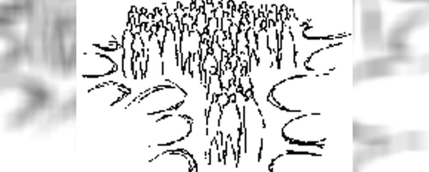 Parrocchia San Lorenzo - Echi di Vita 019 _ 2020